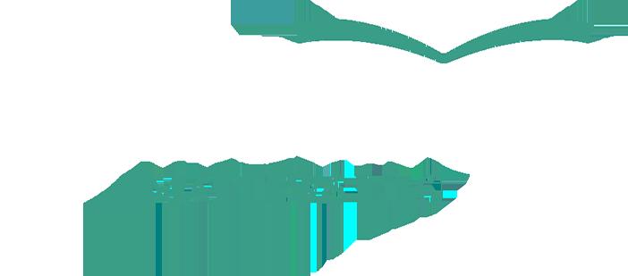literacy-matters-logo_footer